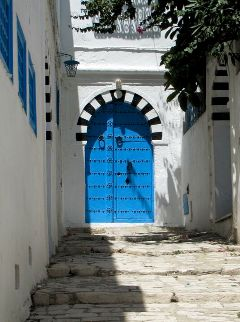 wapdoors wapdoor door blue tunisia