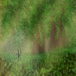dcspiderweb draw drawing art nature