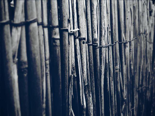 #fences
