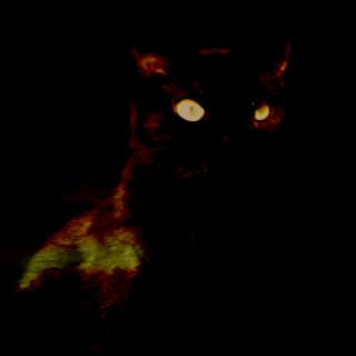 Dark'n'dangerous cat blender - Image by Minnipenny