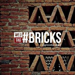 dailytag bricks