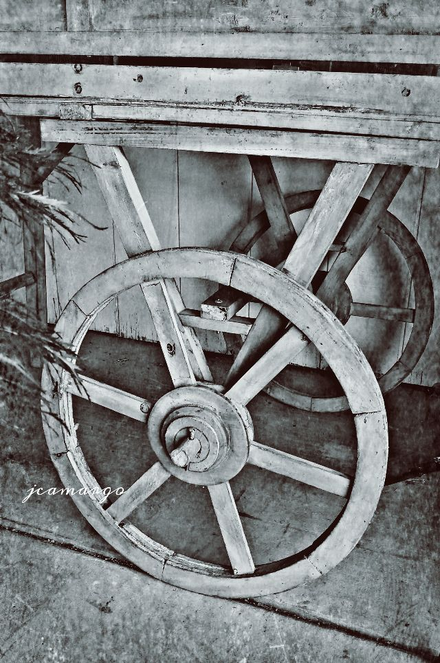 wheel images