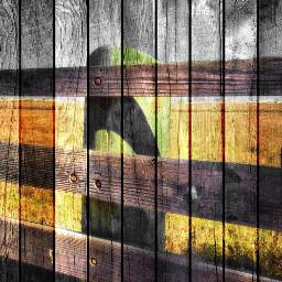 art photography abstract retro colorsplash