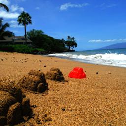 redcar beach palmtree sand bluesky