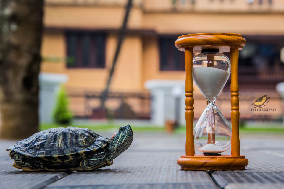 Time #travel