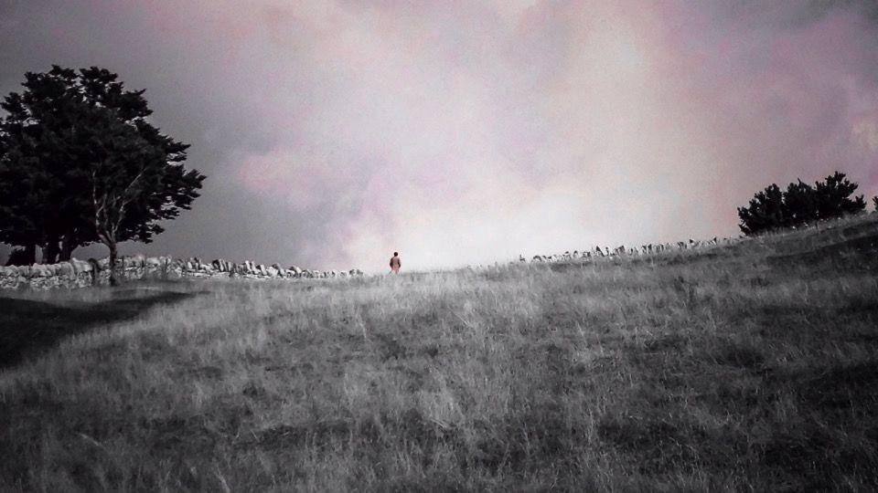 #fog  #landscape  #nature