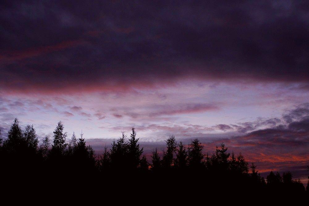 Last nights sunset ♥ Hope you're having a wonderful day my beautiful friends :))  #nature #photography #sunset #landscape