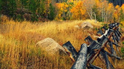 colorful nature photography landscape fall